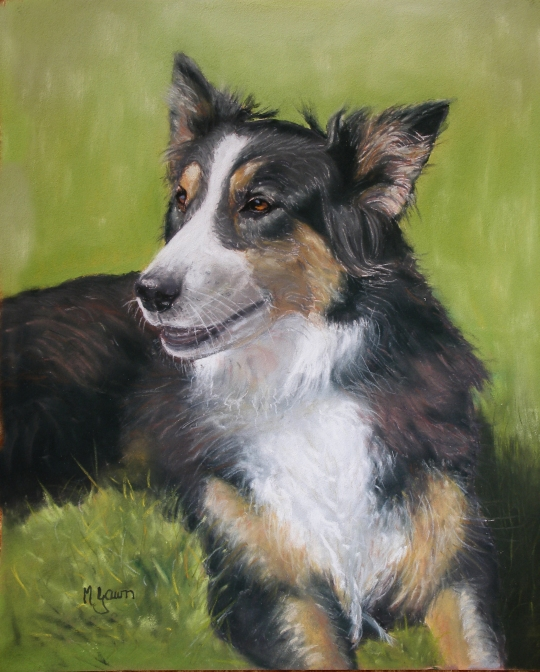 May Gawn has added new pet portraits
